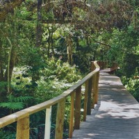 Wilderness South Africa Garden Route Activities and Attractions